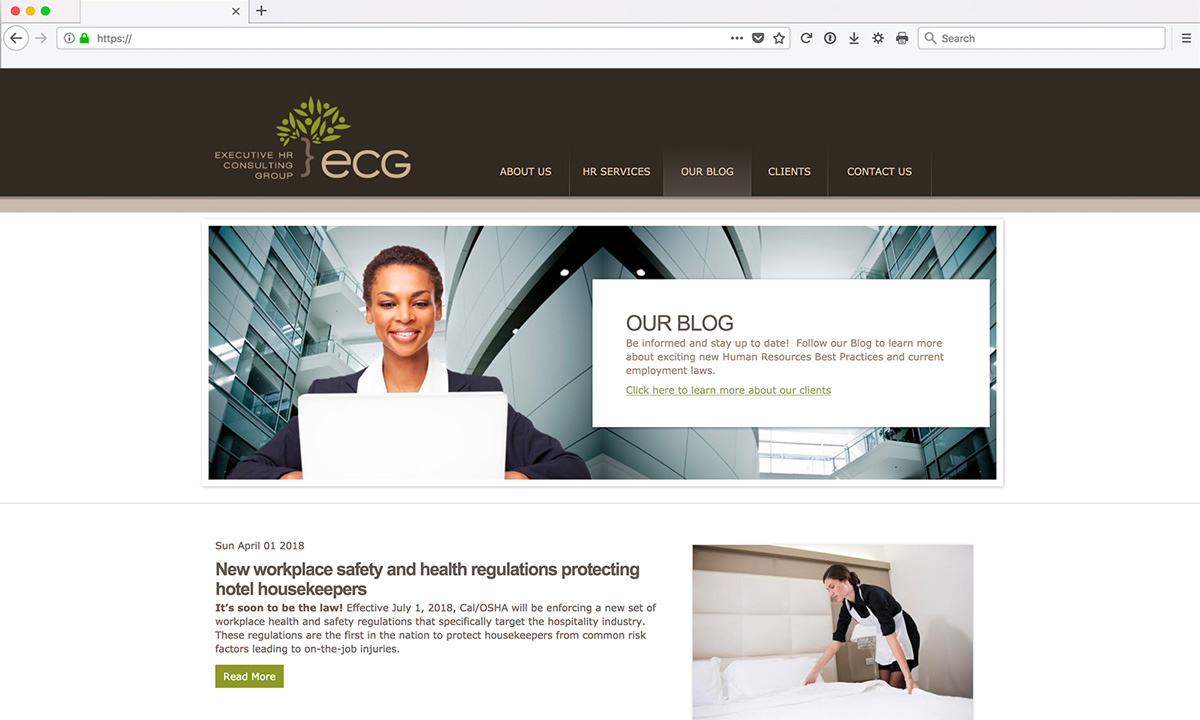 ECG Website Services