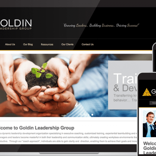Goldin Custom Web Design